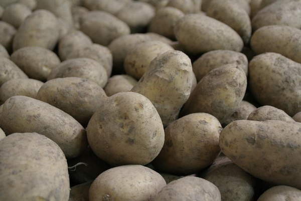 potatoes 965508